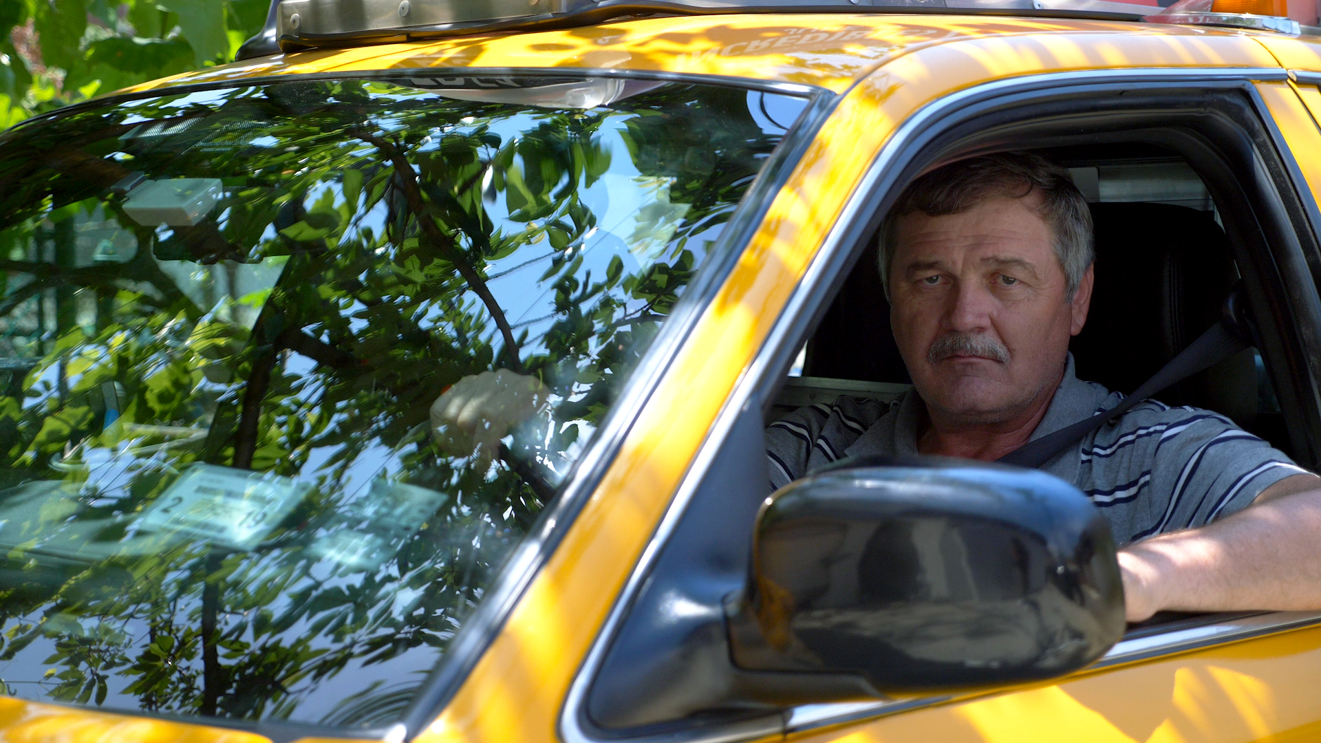 Driver in Taxi